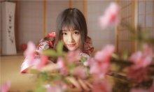 樱花下少女 日本和服美少女