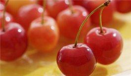 春季养生离不开的食物 春季养生多吃这些